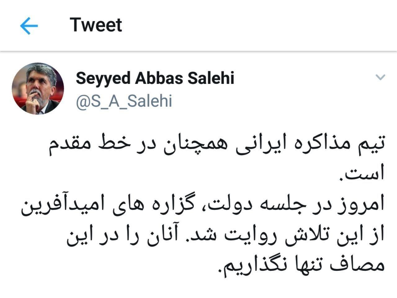 توییت صالحی درباره اقدامات تیم مذاکرهکننده ایران