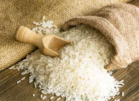 افزایش 16 درصدی واردات برنج هندی