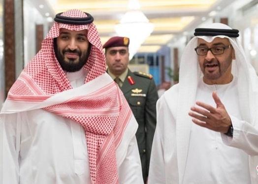 محمد بن سلمان شیخ زاید