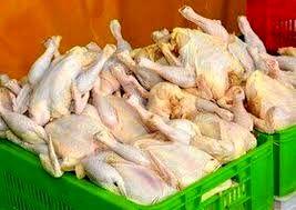 قیمت هر کیلو مرغ  ۲۱ هزارتومان شد