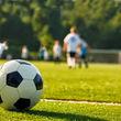 آزمون و خطا در باشگاه های خصوصی فوتبال ایران