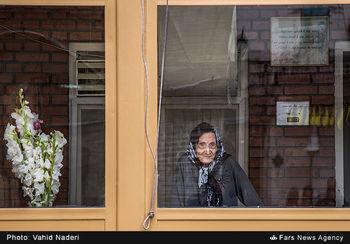وضعیت سالمندان بدون همسر در یک نگاه+اینفوگرافیک