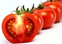 چرا قیمت گوجه نجومی شده؟