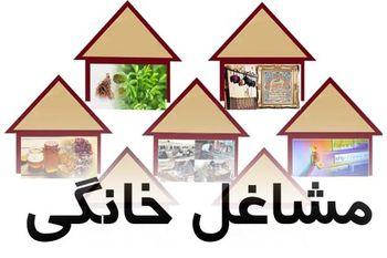 اعطای وام تسهیلات به مشاغل خانگی افزایش یافت