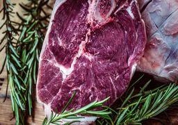 فرآوردههای جایگزین گوشت معرفی شدند