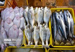 تاثیر کرونا بر بازار ماهی و میگو