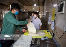 نسبت آمار رشد مبتلایان و متوفیان ویروس کرونا در ایران چقدر است؟+نمودار