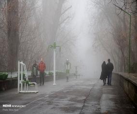 «تبریز» غرق در مه