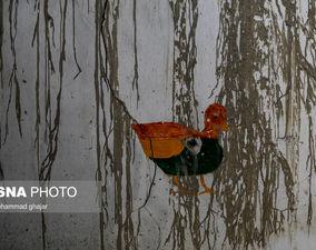 شهرک متروکه معدننشینان در گلستان+گزارش تصویری