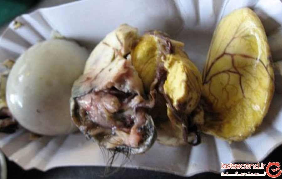 جنین اردک نیمپز