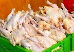 سرکشی مرغ در فروشگاههای پایتخت