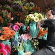گل شاخهای چند؟!