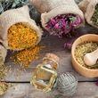 پروتکل جدید سازمان جهانی بهداشت برای استفاده از داروهای گیاهی جهت درمان کرونا
