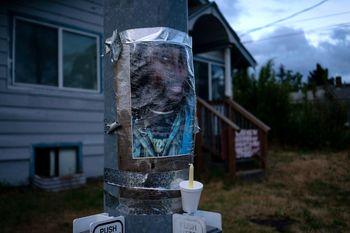 قتل یک سیاهپوست دیگر به دست پلیس آمریکا