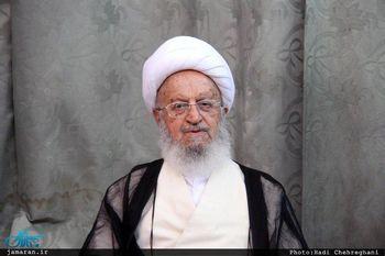 نقل قول منتسب به مکارم شیرازی از نظر رهبری درباره لایحه CFT تکذیب شد