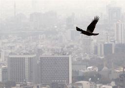 رهن مسکن در تهران از ۴۰میلیون تا ۴میلیارد