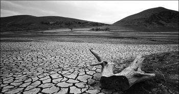 پای بحران آب به مجلس کشیده شد