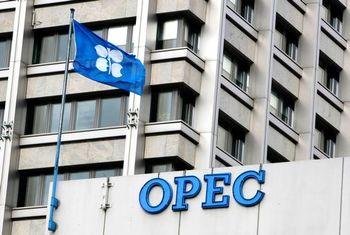 اوپک نمی تواند روند کاهش قیمت نفت را متوقف کند