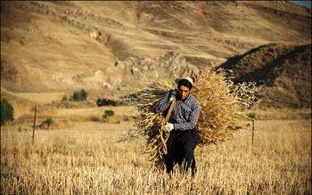 تورم روستایی به 31.1 درصد رسید / مرکز آمار ایران نرخ تورم روستایی در اردیبهشت ماه امسال را ۳۱.۱ درصد اعلام کرد.