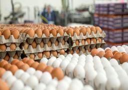 گوگل مشکل شکسته شدن تخم مرغ ها را نیز حل کرد!