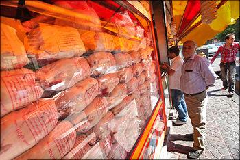 دپوی ماهانه 10 هزار تن مرغ/چرا ایران نمیتواند مرغهای مازادش را صادر کند؟