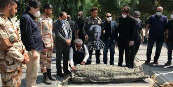 پیکر پیشکسوت سینمای ایران به خاک سپرده شد