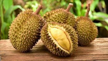 میوه ای که وجود آن در مکان های عمومی ممنوع است
