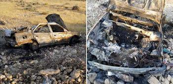 تصادف با الاغ 3 کودک را زنده زنده سوزاند