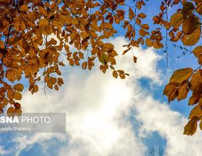 تصاویر اعجاببرانگیز از پاییز در استان مازندران