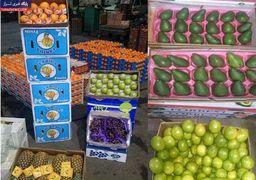 رونق دوباره توزیع خزنده میوه های قاچاق