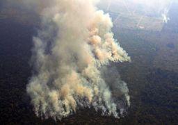 انتقادها از گوگل برای ارائه نتایج بیربط هنگام جستجوی آتشسوزی آمازون