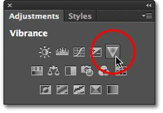 Adding a Vibrance adjustment layer to the document. Image © 2012 Photoshop Essentials.com