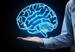 ورزش مغز را تنظیم می کند