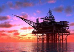 پیش بینی قیمت نفت/ رشد دلار قیمت طلای سیاه را کاهشی میکند