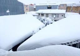 آخرین وضعیت گیلان پس از برف، هنوز برق نداریم !