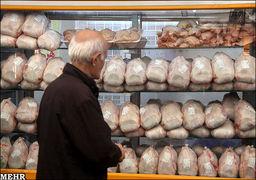 قیمت مرغ در بازار امروز +جدول
