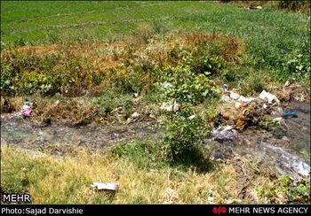 آبیاری اراضی کشاورزی جنوب تهران با آب فاضلاب