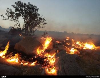 ۱۳۰۰ هکتار از مراتع گلستان سوخت