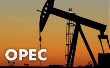 اوپک مانع سقوط شدید قیمت نفت شد