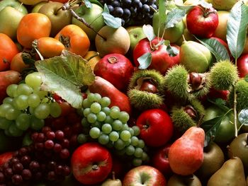 میوه  بخوریم یا آبمیوه ؟