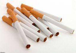 پیش بینی افزایش 15 میلیارد نخی تولید سیگار در کشور