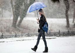 در روسیه برف سیاه بارید + عکس