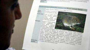 ویروس هانتا یک نفر را در چین کشت؛ این بار سرایت از موش!