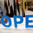 آینده اوپک در دستان زنگنه و همتای سعودی
