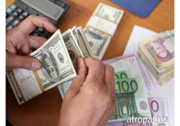 دلالان به دنبال افزایش نرخ دلار