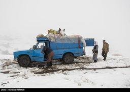 سرمای منفی 20 درجه در راه ایران / جزئیات بارشها در آخر هفته