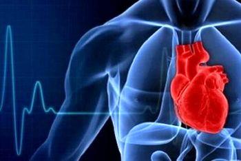 علت شیوع بالای حملههای قلبی در انسان