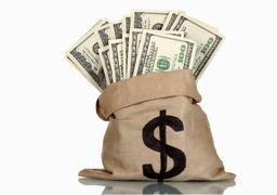 بازار متشکل ارزی؛ مهمترین طرح دولت برای ساماندهی بازار ارز