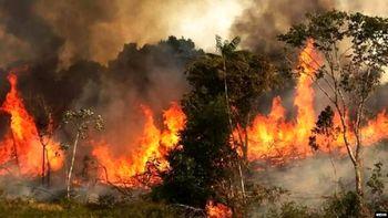 آتش سوزی بویراحمد اطفا شد