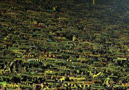 تحریم سنگین هواداران یک تیم فوتبال